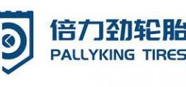PALLYKING